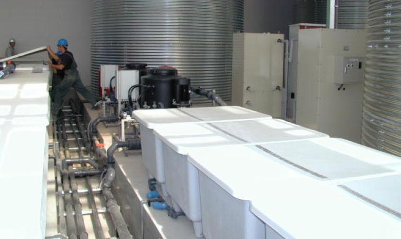 bazine fertilizare netafim