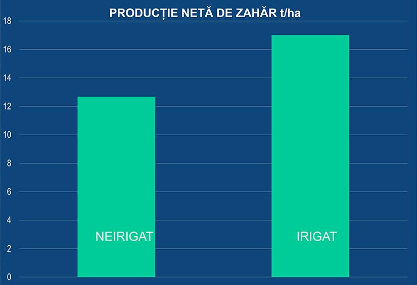 productie neta de zahar