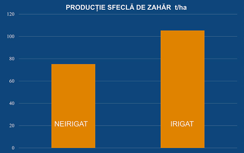 productie sfecla de zahar netafim
